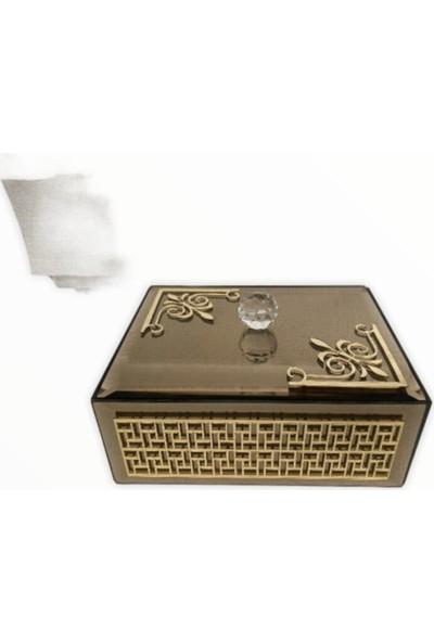 Arem Dekor Aksesuar Cam Gümüş Detaylı Mücevher Kutusu