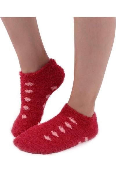 Sahab Sabab Kadın Puantiyeli Peluş Çorap 48800 | Kırmızı