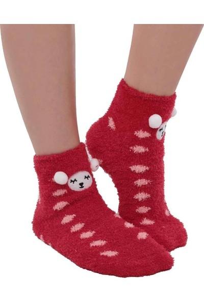 Sahab Ayıcık Nakışlı Kadın Pelüş Çorap 47100 | Kırmızı
