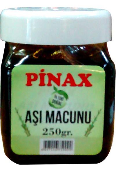 Pinax Aşı Seti 3 Aşı Macunu Aşı Bandı Bağ Makası Aşı Çakısı