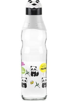 Titiz Plastik Panda Desenli Cam Suluk 1000 ml Matara Su Şişesi Sürahi