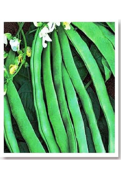Agrodal Tarım Ata Tohumu Yerli Sırık Fasulye 50 Adet Tohum