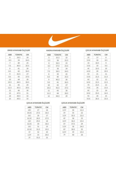 Nike Air Max Dia AQ4312-201 Kadın Spor Ayakkabı