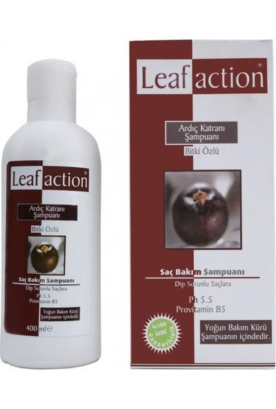 Leaf Action Bitki Özlü Ardıç Katranı Şampuanı 400 ml