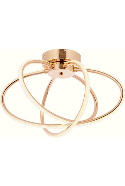 Luna Lighting Modern Gold Sarı LED Avize 3 Ledli Plafonyer Avize