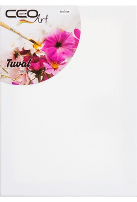 Ceo Art Ceoart Tuval Canvas 3'lü Set