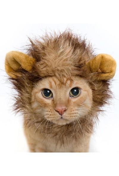 Go İthalat Kedi Aslan Yelesi Peruk