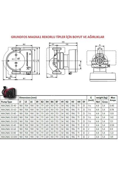 Grundfos Magna1 25-40 Rekorlu Fk Sir.pom. 1''