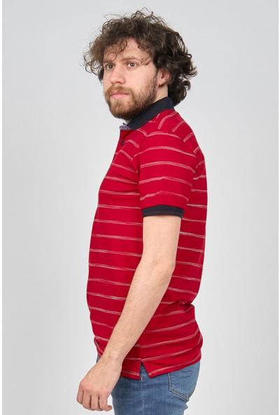 Qwerty Erkek Çizgili Polo Yaka T-Shirt 5452380 Kırmızı