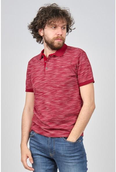Qwerty Erkek Desenli Polo Yaka T-Shirt 5452258 Bordo