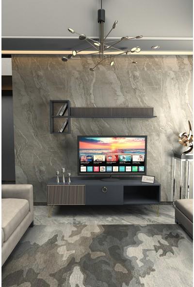 Kolex Azra Tv Ünitesi 160CM Antrasit Renk, Gold Metal Ayaklı