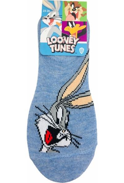 Çimpa Looney Tunes Çizgi Film Karakterli Pamuk Sneaker Çocuk Çorabı