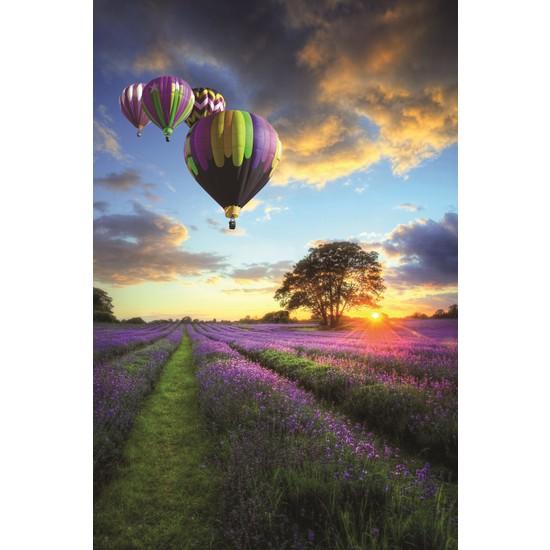 Çiçek Tarlasında Balonlar Kanvas Tablo 50X70