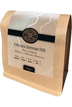 Sirius Coffee Ethiopia Djimmah Gr5 250 gr