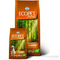 Ecopet Natural Kuzu Etli 2,5 Kg Yetişkin Köpek Maması *