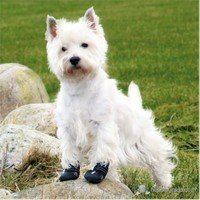 Trixie Köpek Yürüyüş Botu XXLarge Siyah Renkli 2 Adet Retriever