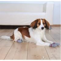 Trixie Köpek Çorabı S-M ( Border Collie )