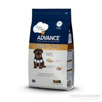 Advance Yorkshire Terrier Junior Yavru Köpek Maması 1,5 Kg