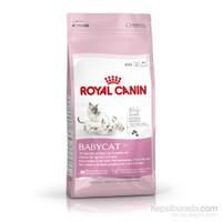 Royal Canin BabyCat Yavru Kuru Kedi Maması 2 Kg