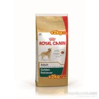 Royal Canin Bhn Golden Retr Adult 12+2 Kg