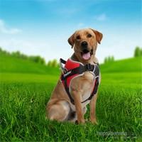 Outdoor Tutacaklı Yansıtıcılı Köpek Göğüs Tasması S Kırmızı