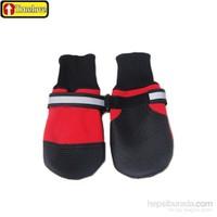 Koruyucu Köpek Ayakkabısı M Kırmızı