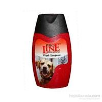 Pro Line Premium Genel Yıkama Köpek Şampuanı 500 ml