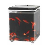 Aquasyncro Fish Home Akvaryum Siyah 20 Cm X 20 Cm X 26 Cm