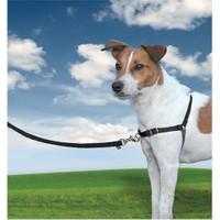 Easy Walk™ Harness - Small Siyah Köpek Tasması
