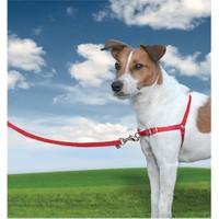 Easy Walk Harness Köpek Göğüs Tasması Small