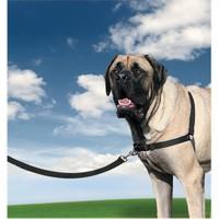 Easy Walk™ Harness - Extra Large Siyah Köpek Tasması