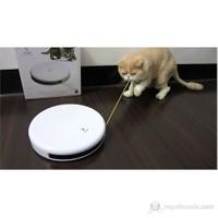 Froli Cat Flik Interactive Kedi Köpek Oyuncak
