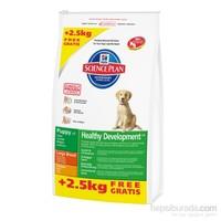 Hill''s Science Plan Tavuklu Büyük Irk Yavru Köpek Maması 13,5 Kg (Puppy Healthy Development Large Breed with Chicken)
