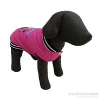 Bobo Yağmurluk Köpek Elbisesi Pembe 28Cm X 38Cm Small
