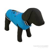 Bobo Yağmurluk Köpek Elbisesi Mavi 32Cm X 42Cm Medium