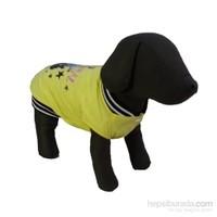 Bobo Yağmurluk Köpek Elbisesi Sarı 44Cm X 54Cm Xx-Large