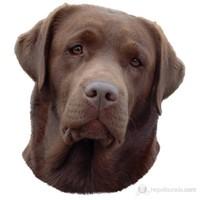 Trixie Köpek Çıkartması, St-Labrador Kahve 1 Adet