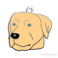 Dalis Pet Tag - Şampanya Labrador Köpek Künyesi (İsimlik)
