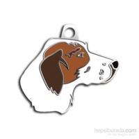 Dalis Pet Tag - Poınter Köpek Künyesi (İsimlik)