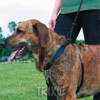 Trixie Köpek Yürüme Eğitim Tasması Xl55-80Cm 25Mm