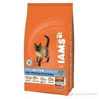 Iams Adult Ocean Fish & Chicken 15 Kg Kedi Maması