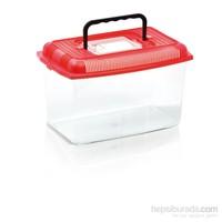 Imac Arıel Medıum 4 L Plastik Akvaryum 28*17,3*17,3 fd
