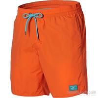 O'neill Pm Vert Shorts
