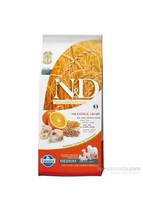 N&D Balıklı Portakal Düşük Tahıllı 12 Kg Yetişkin Köpek Maması