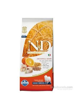 N&D Balıklı Portakal Düşük Tahıllı Yetişkin Büyük Irk 12 Kg Köpek Maması