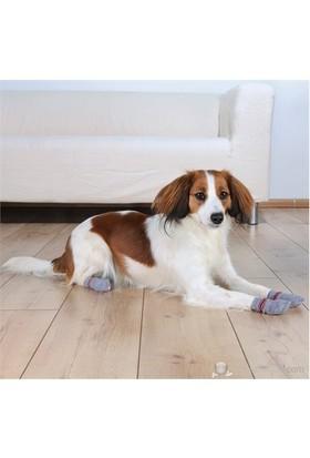 Trixie Köpek Çorabı M-L ( Golden Retriever )