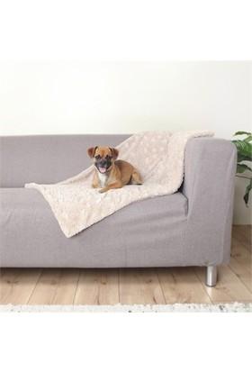 Trixie köpek battaniye, 150x100cm, bej