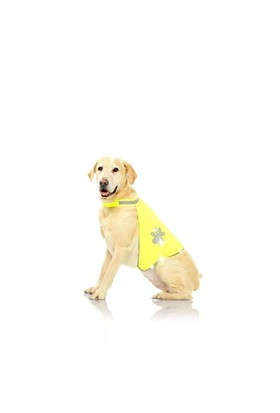 Pawise Safety Vest - Köpek Yeleği Small
