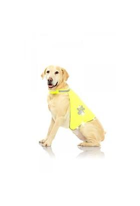 Pawise Safety Vest - Köpek Yeleği Medium