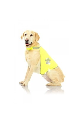 Pawise Safety Vest - Köpek Yeleği Large
